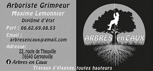 Arbres en Caux – Maxime Lemonnier